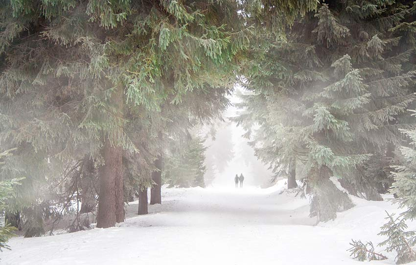 Trailrunning  in der kalten Jahreszeit