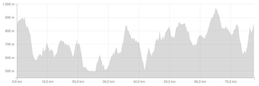 Das Höhenprofil: Das Mühlviertel ist ein stetiges auf und ab. Auf den ca. 80 km sind pro Tag ca. 1000 Höhenmeter enthalten.