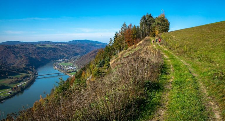 Trailrunning in der Donauregion in Oberösterreich